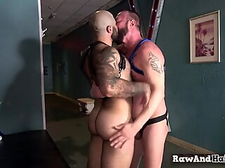 Muscular stud drilled by mature bear